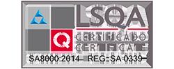 Horiz-SA8000-2014-REG--SA-0339